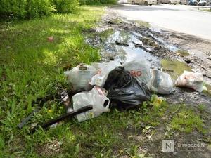 Свыше 40 млн рублей направят на обследование опасных свалок Нижегородской области