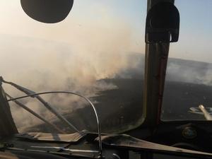 Четвертый класс пожароопасности объявлен в пяти районах Нижегородской области