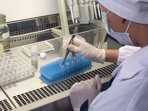 Число жалоб нижегородцев на укусы клещей снизилось почти на треть