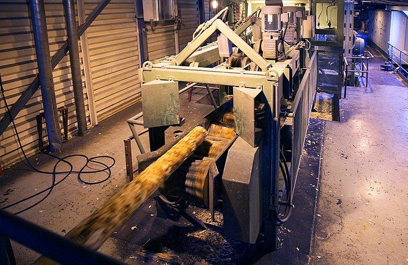 Китайские инвесторы готовят к открытию в Тоншаевском районе предприятие по переработке древесины - фото 1