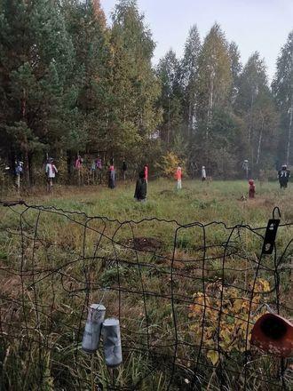 Поляну с повешенными ростовыми куклами нашли грибники в арзамасском лесу - фото 5