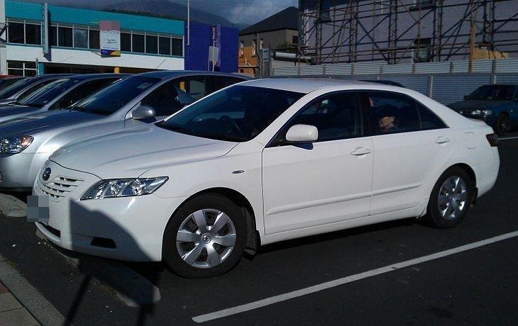 Почти 100 млн рублей ушло на обновление автопарка правительства Нижегородской области - фото 1