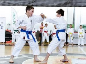 Почти 300 участников заявились на чемпионат Нижегородской области по каратэ