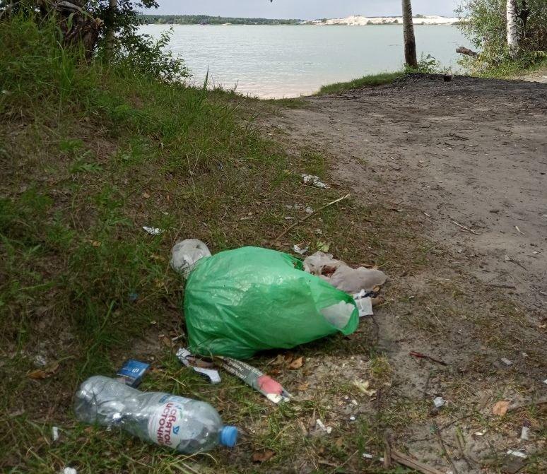В подарок ко Дню города нижегородцы уберут мусор на Силикатном озере - фото 1