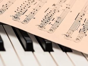 Музыкальные инструменты почти на 3 млн рублей закупила нижегородская школа искусств
