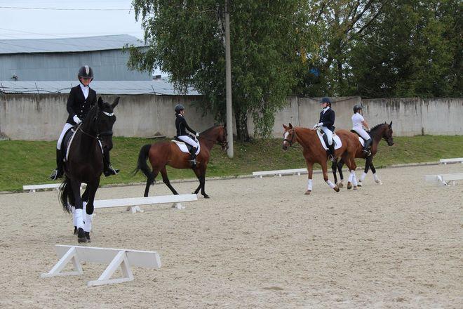 Взаимопонимание и грация: всероссийские соревнования по выездке стартовали в Нижнем Новгороде - фото 29