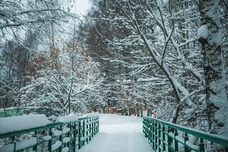 Благоустройство парка «Швейцария» выполнено на 35% в Нижнем Новгороде
