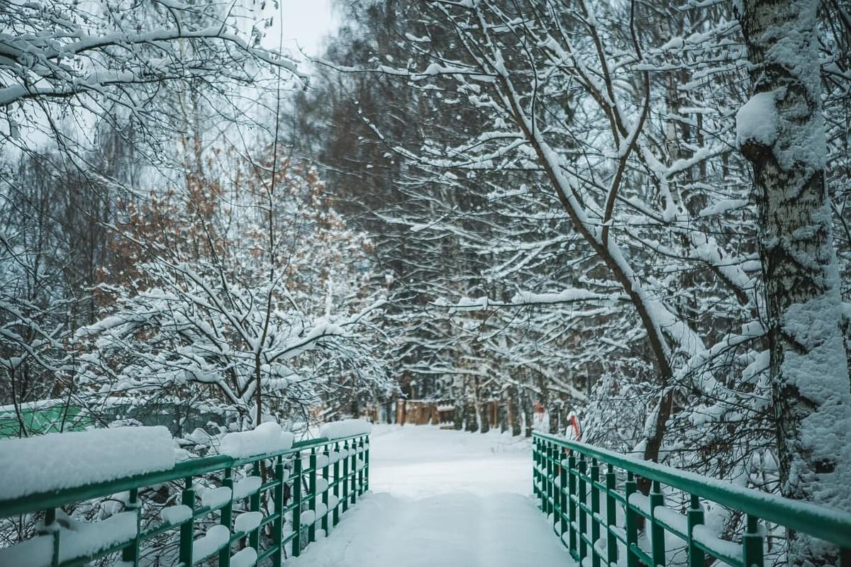 Благоустройство в парке «Швейцария» выполнено на 35% - фото 1