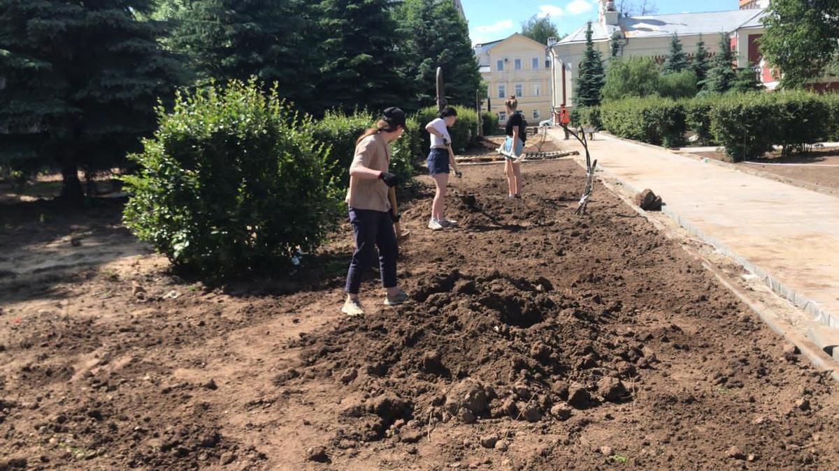 Липы, яблони и боярышник посадят в сквере им. Нестерова в Нижнем Новгороде - фото 1