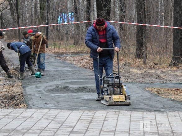 Уникальная площадка и тропинки для собак появились в нижегородском парке «Дубки» - фото 12