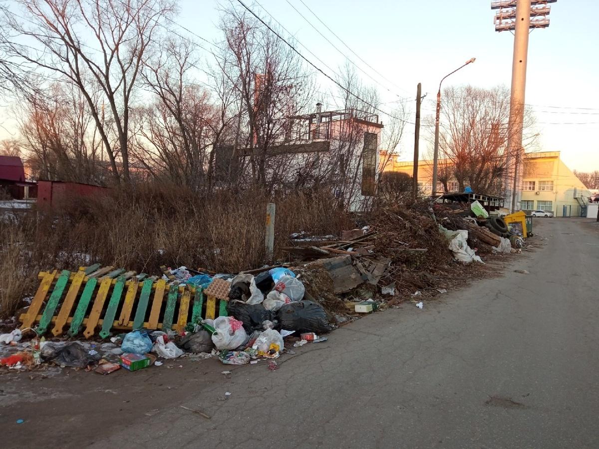 Все 29 свалок ликвидировали в частном секторе Канавинского района - фото 1