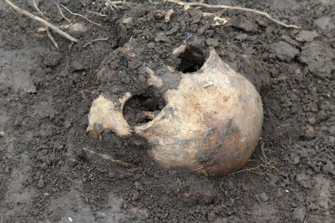Новые находки на старом кладбище: что обнаружили археологи в Нижегородском кремле - фото 15